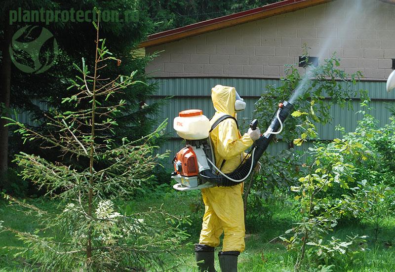 Методы (меры) защиты растений
